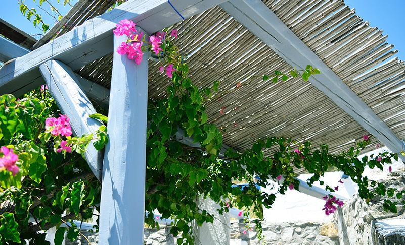 Instalación y venta de pérgolas naturales de cañizo, brazo, bambú o mimbre. Tipos de pérgolas.